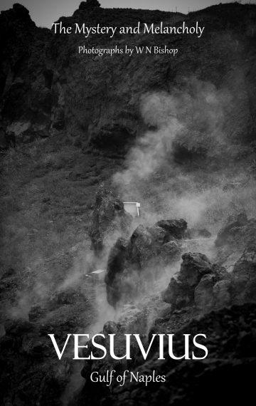 Mt Vesuvius 2019