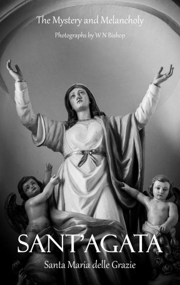 Santa Maria delle Grazie 2019